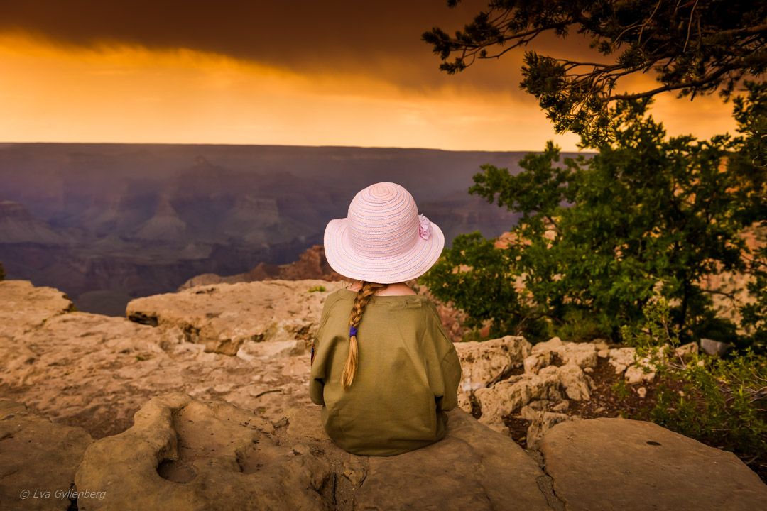 Topp 5 naturupplevelser i Arizona