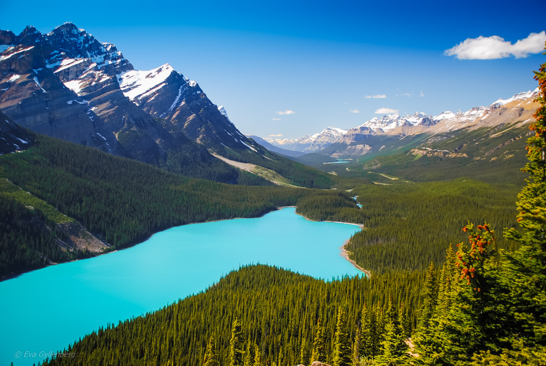 Fotoalbum från British Columbia 54