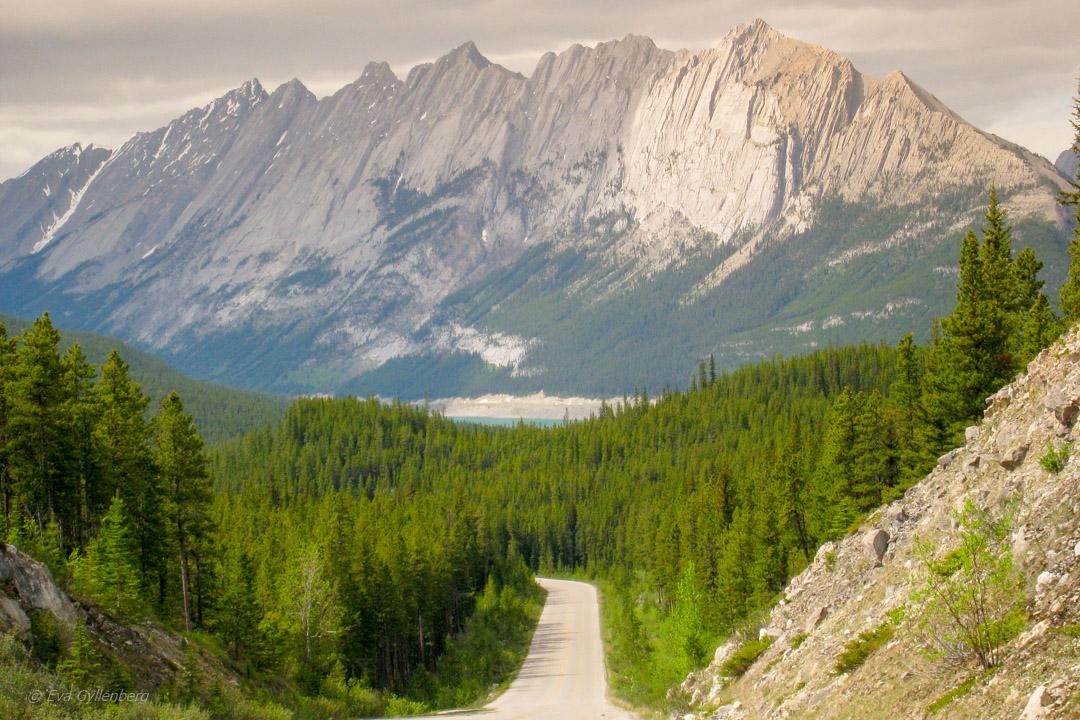 Fotoalbum från British Columbia 38