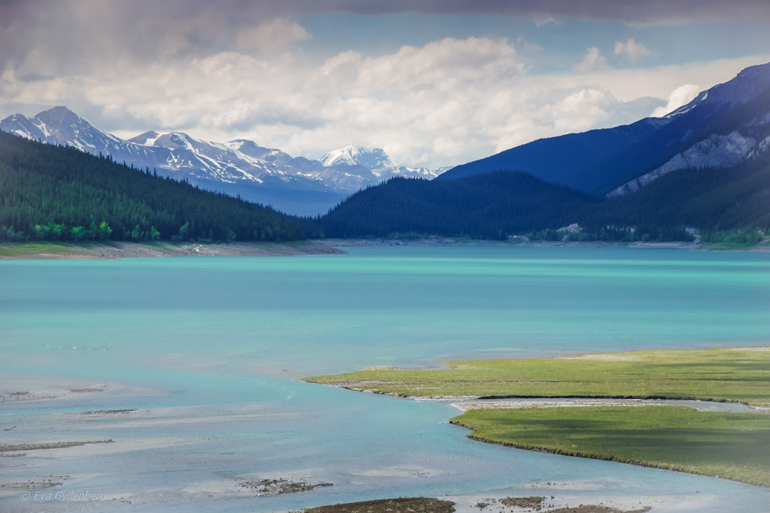 Fotoalbum från British Columbia 30