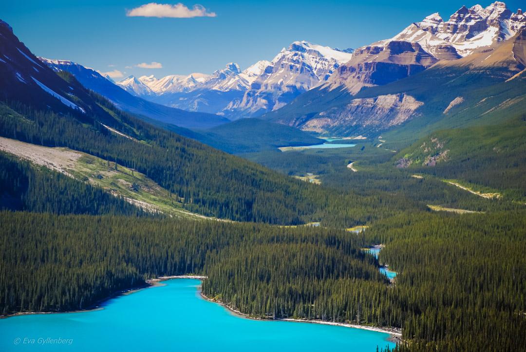 Fotoalbum från British Columbia 24