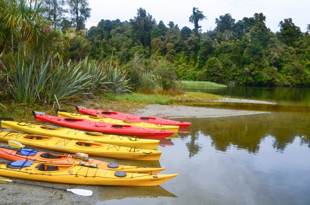 Franz Josef National Park - Resedagbok Nya Zeeland dag 6 7