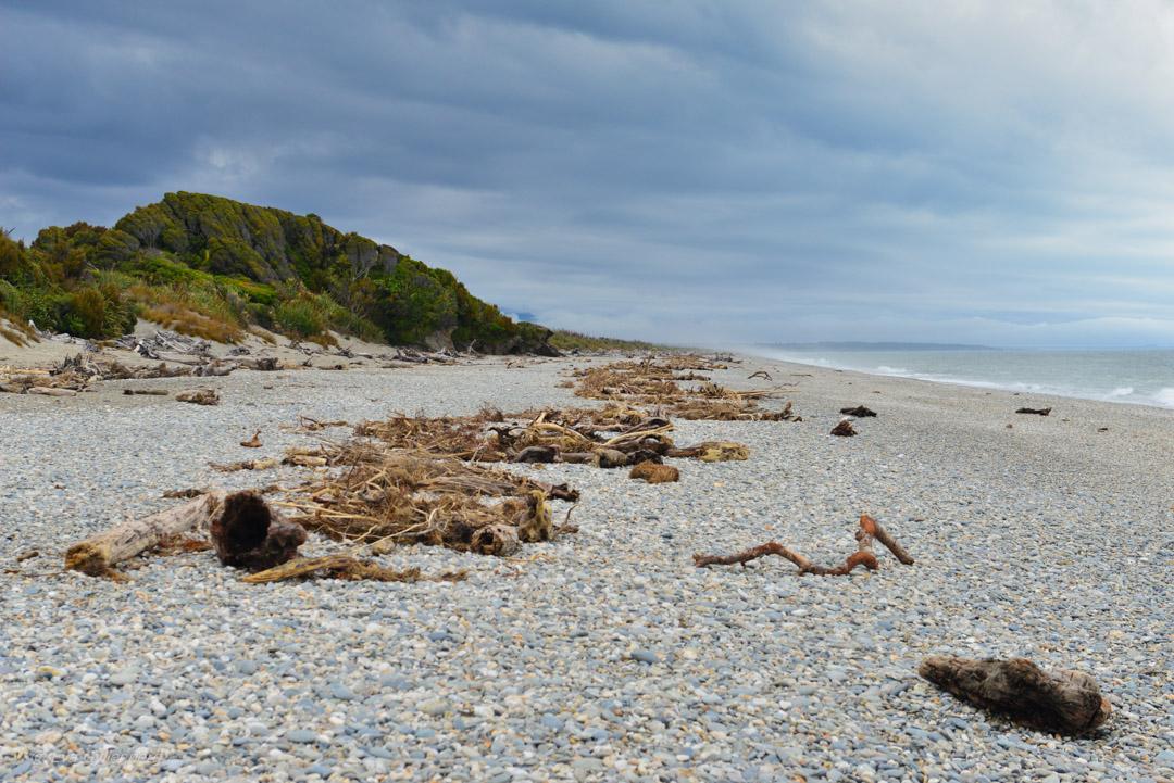 Mount Aspiring National Park - Resedagbok Nya Zeeland dag 4 16