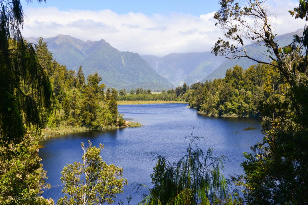 Franz Josef National Park - Resedagbok Nya Zeeland dag 6 22