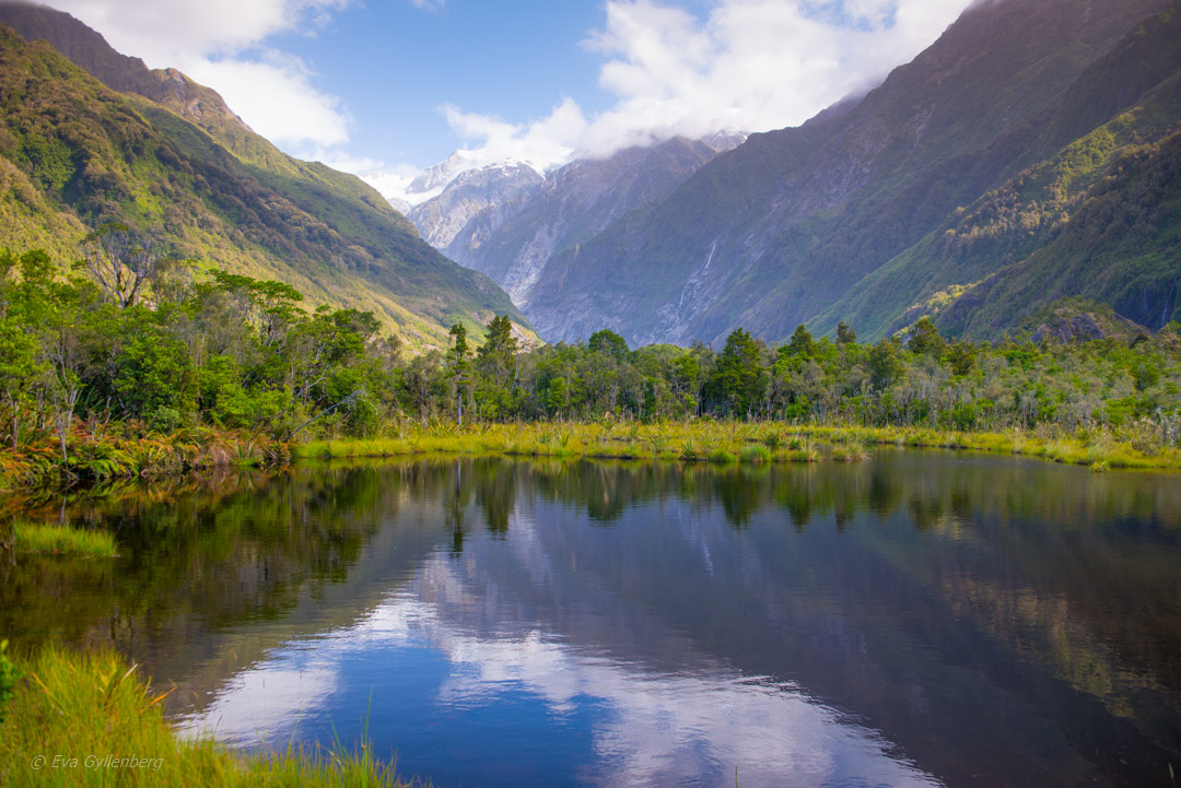 Franz Josef National Park - Resedagbok Nya Zeeland dag 6 28