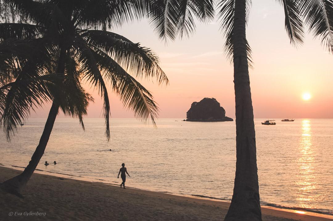 Fotoalbum från Pulau Tioman 17