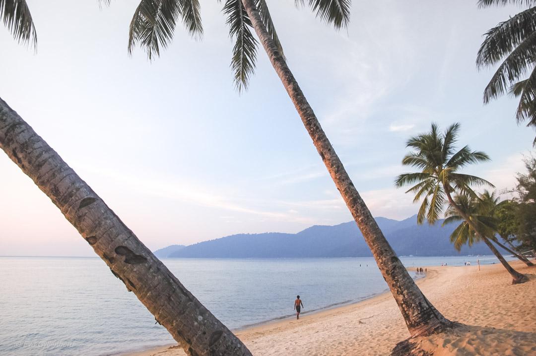 Fotoalbum från Pulau Tioman 19