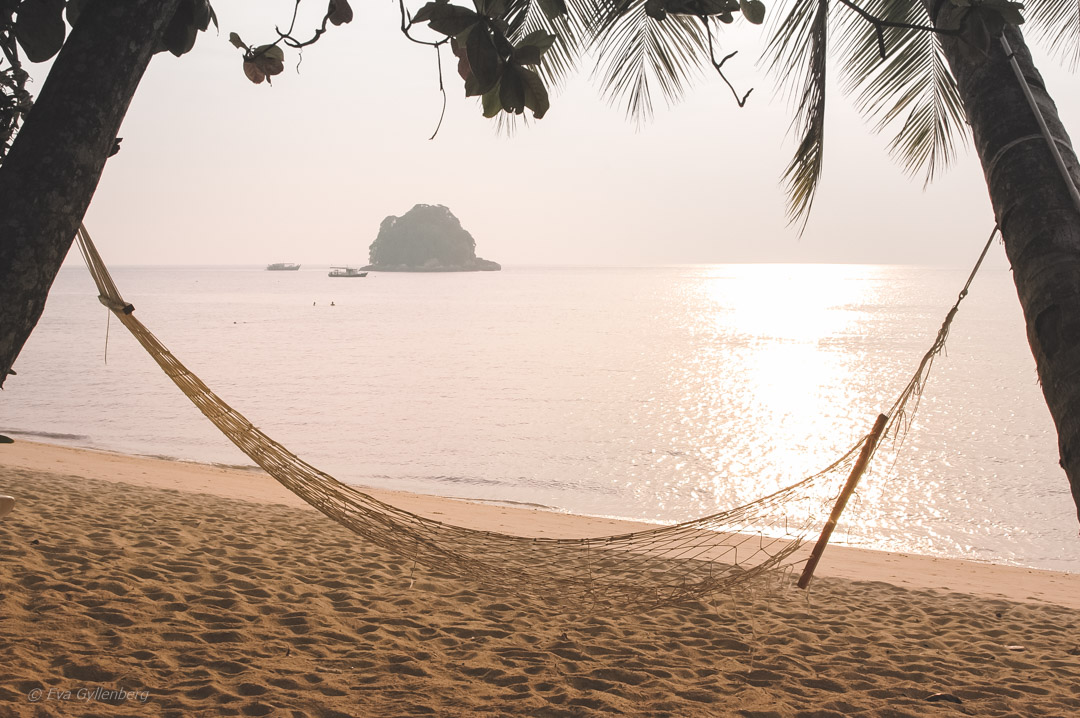 Fotoalbum från Pulau Tioman 23