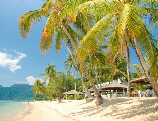 Fotoalbum från Pulau Tioman 26