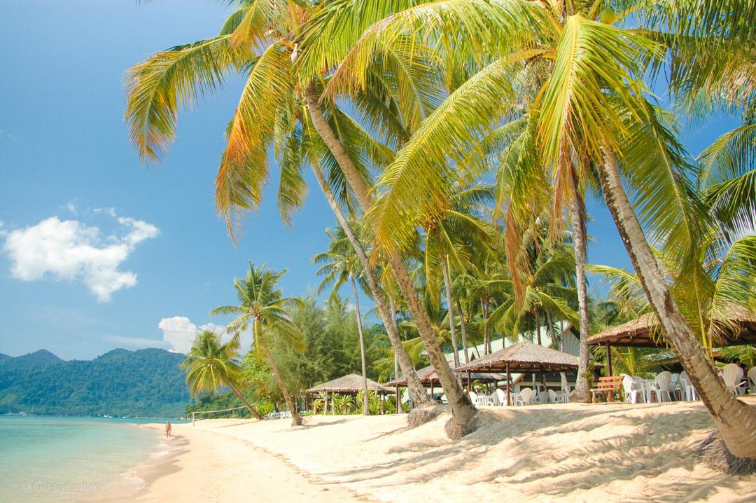 Fotoalbum från Pulau Tioman 1