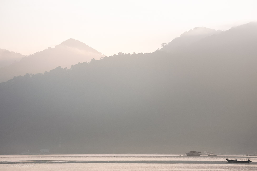 Fotoalbum från Pulau Tioman 7