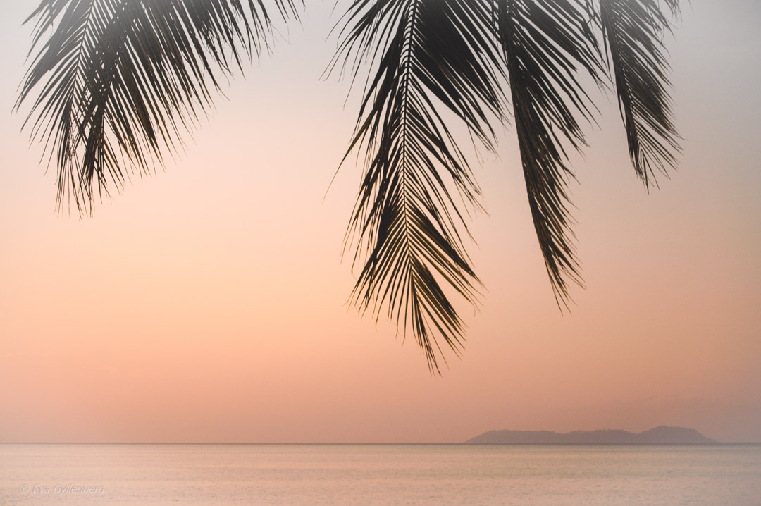 Fotoalbum från Pulau Tioman 31