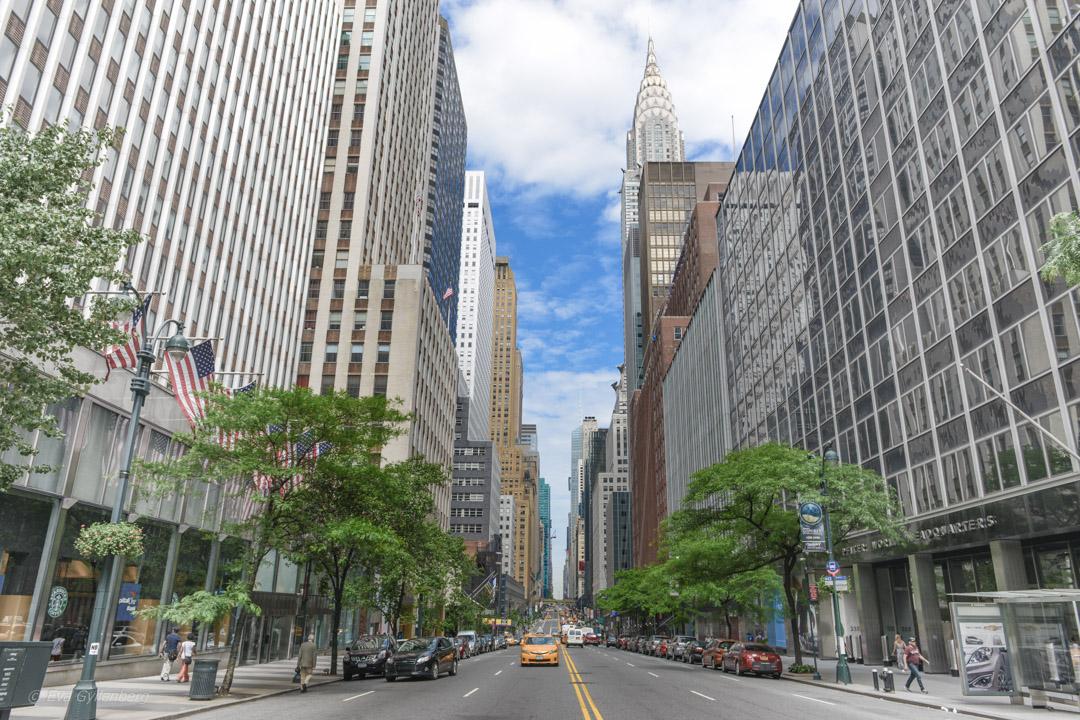Gata - New York