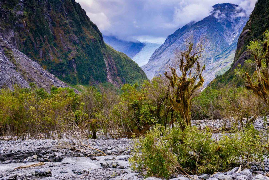Fox Glacier och lysmaskar - Resedagbok Nya Zeeland dag 5 1