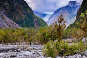 Fox Glacier och lysmaskar - Resedagbok Nya Zeeland dag 5 9