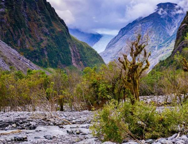 Fox Glacier och lysmaskar - Resedagbok Nya Zeeland dag 5 6