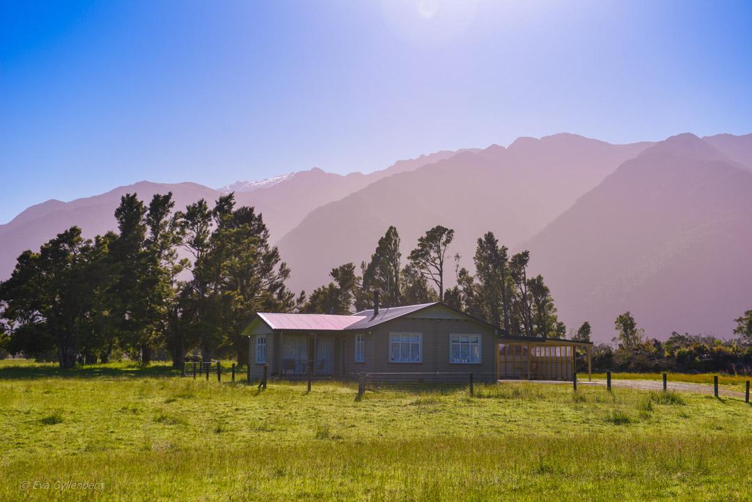 Hokitika och Punakaiki - Resedagbok Nya Zeeland dag 7 13