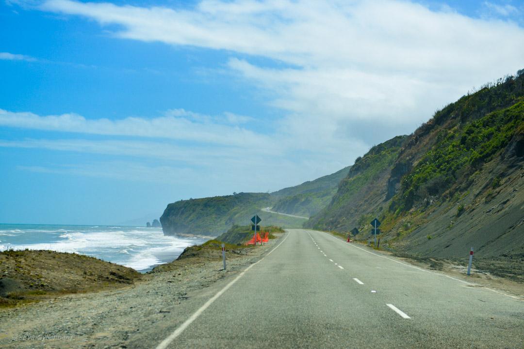 Hokitika och Punakaiki - Resedagbok Nya Zeeland dag 7 33