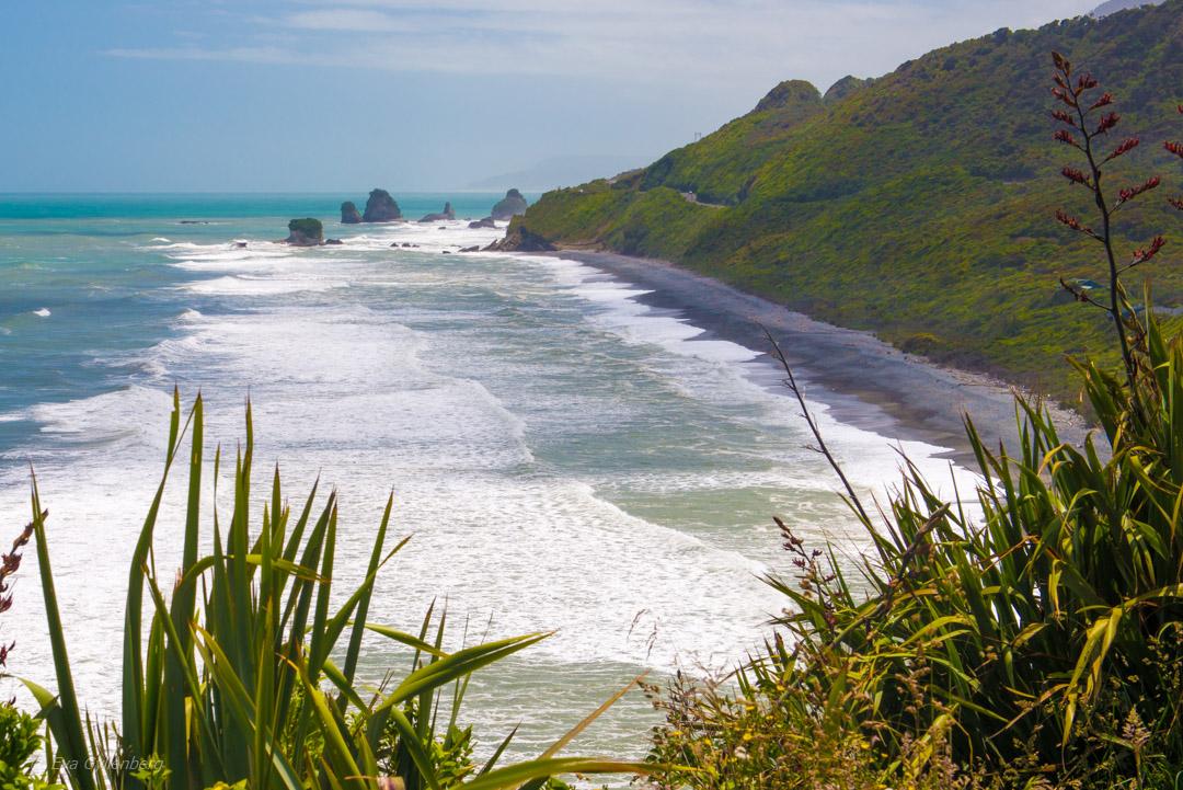 Hokitika och Punakaiki - Resedagbok Nya Zeeland dag 7 37