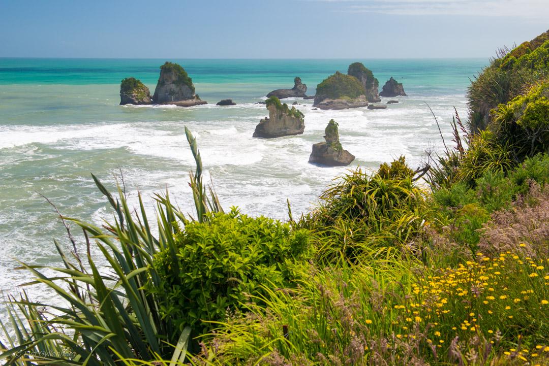 Hokitika och Punakaiki - Resedagbok Nya Zeeland dag 7 17