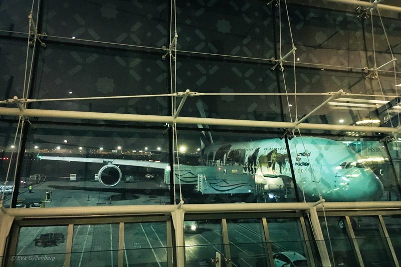 Emirates Business Class Lounge i Dubai 16
