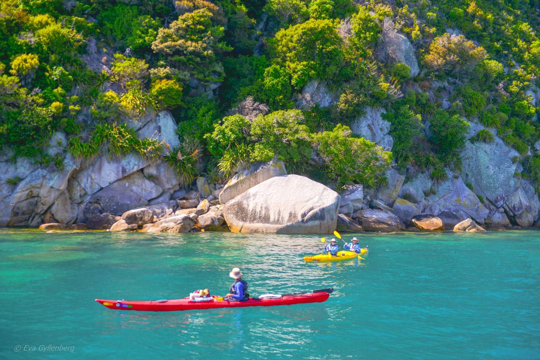 Abel Tasman National Park – Resedagbok Nya Zeeland dag 8