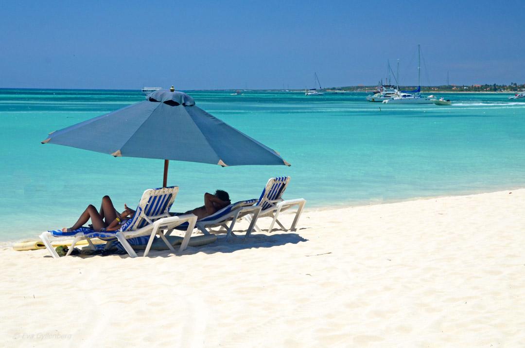 Aruba 6