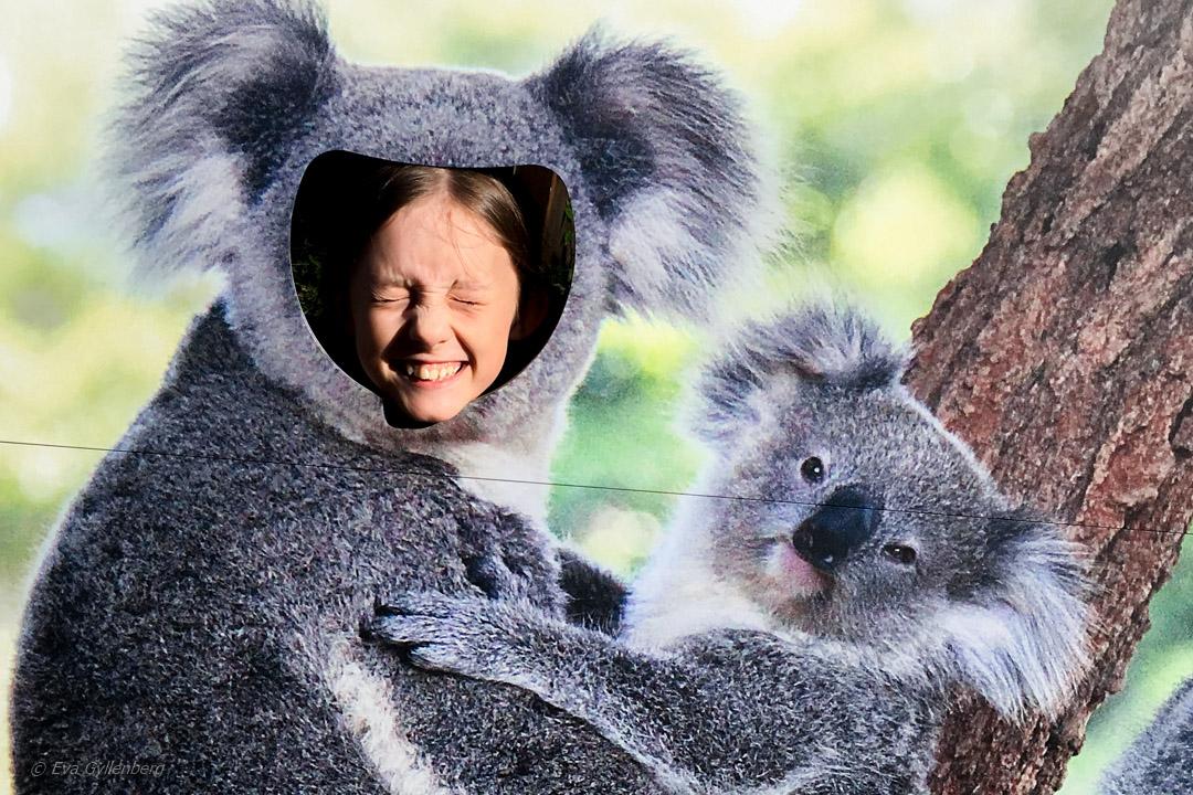 Resa till Australien med barn 1