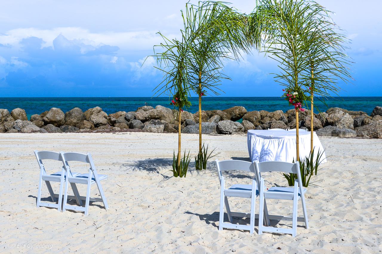 Bahamas 7