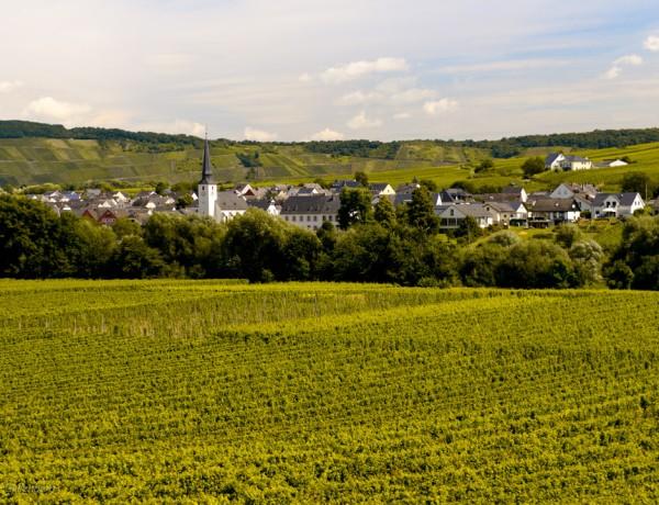 Rhen-Mosel