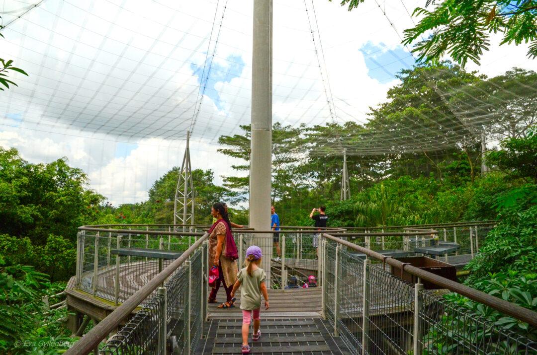 Singapore med barn - reseguide till mina 14 favoriter 25