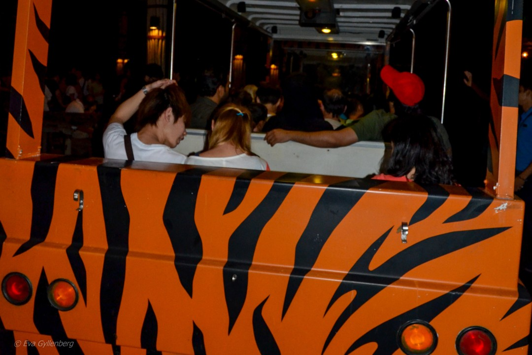 Night Zoo - Singapore