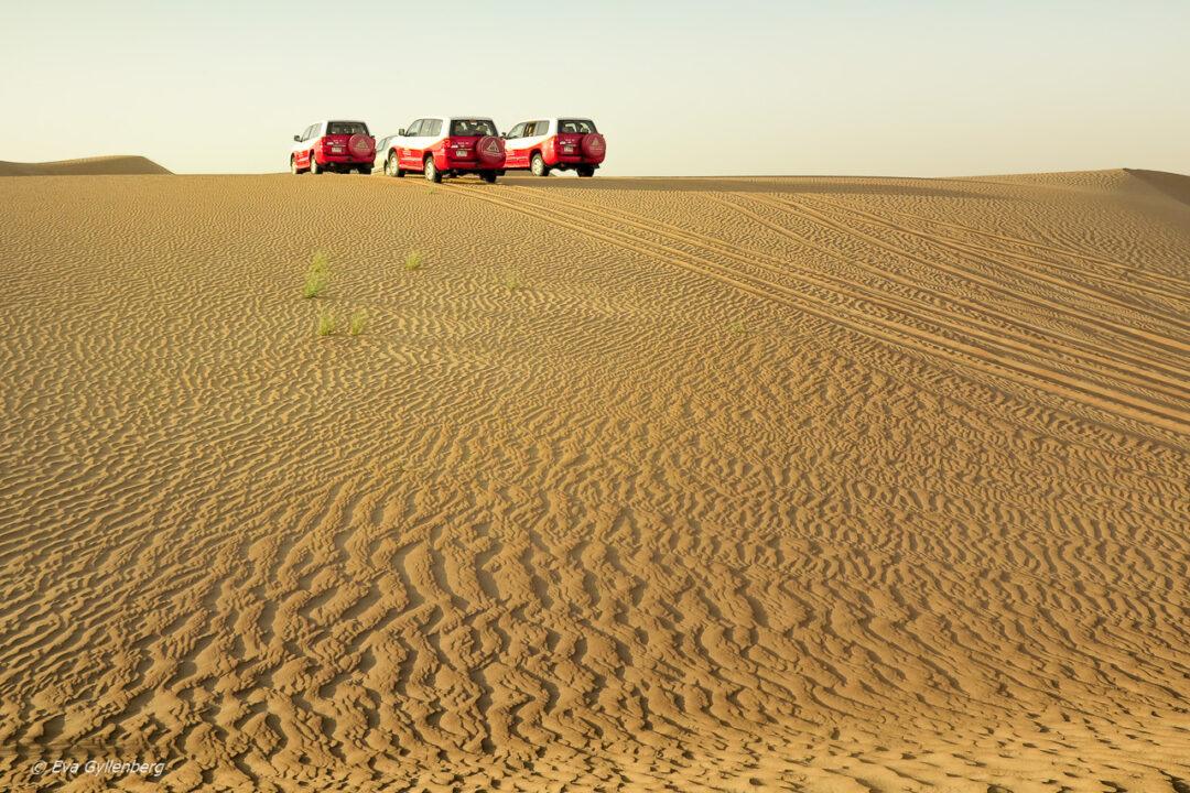 Dune bashing i öknen - Dubai - UAE