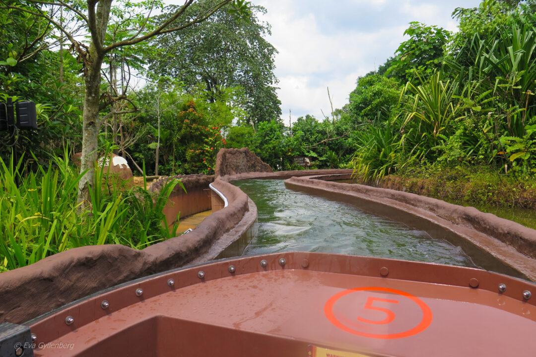 Singapore med barn - reseguide till mina 14 favoriter 29