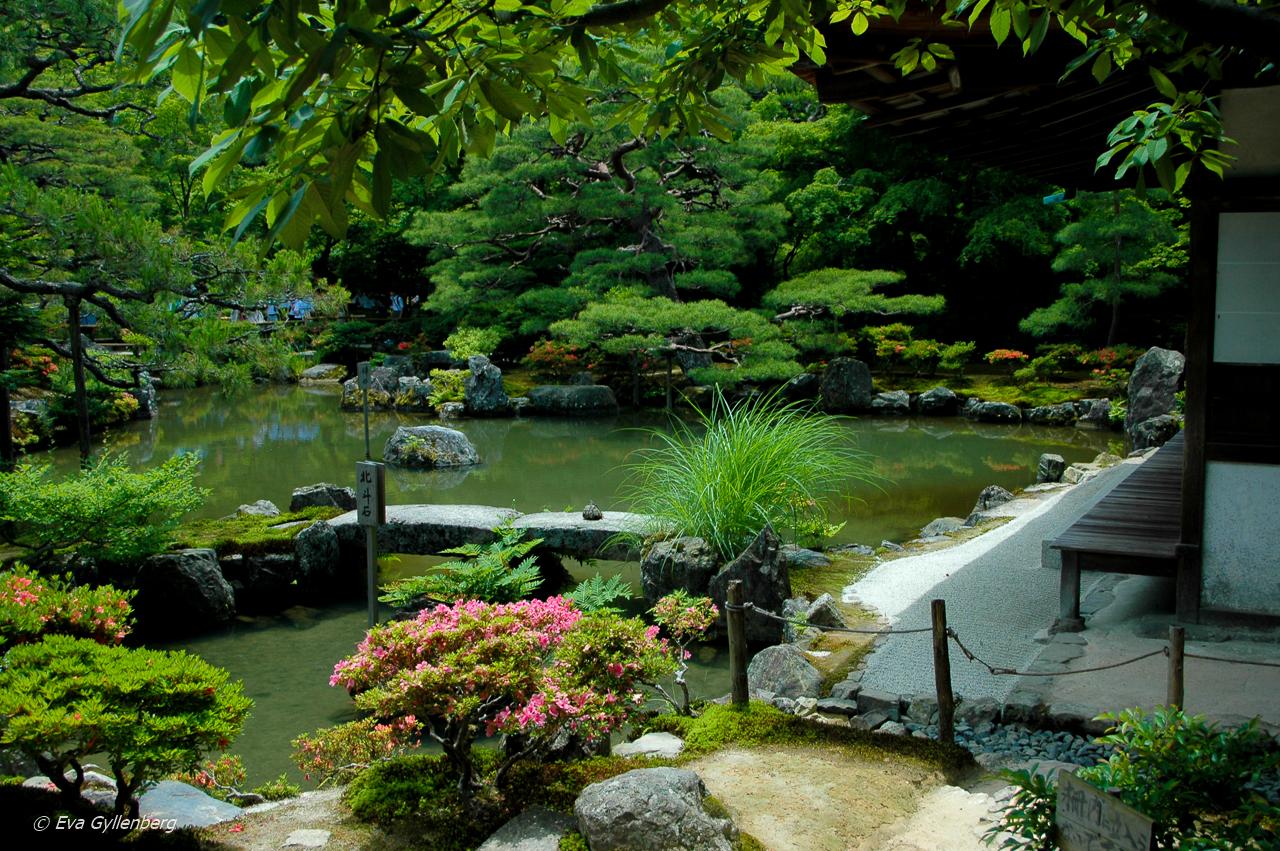 21 foton som får dig att vilja åka till Japan