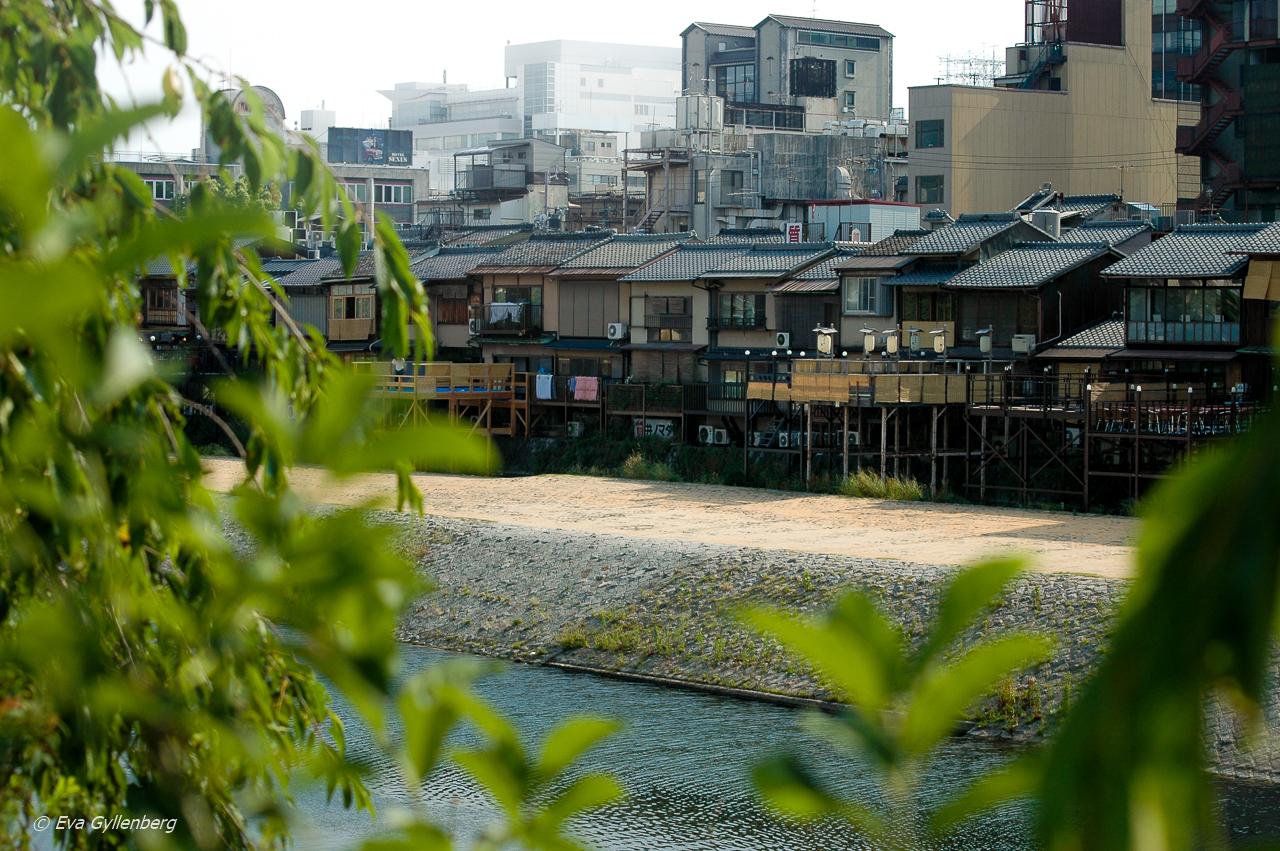 21 foton som får dig att vilja åka till Japan 24