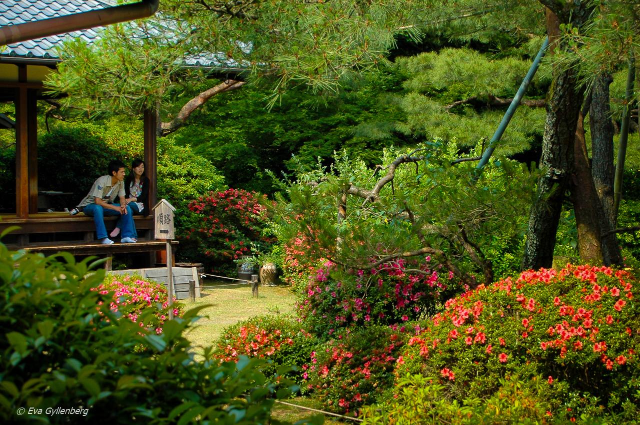 21 foton som får dig att vilja åka till Japan 36