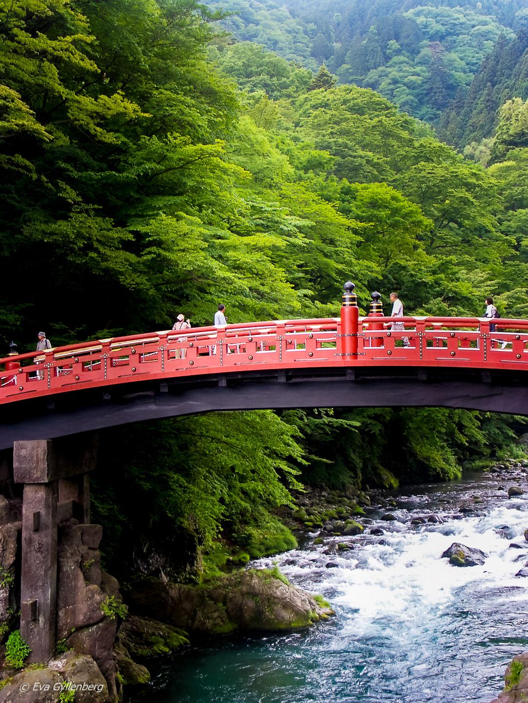 21 foton som får dig att vilja åka till Japan 46