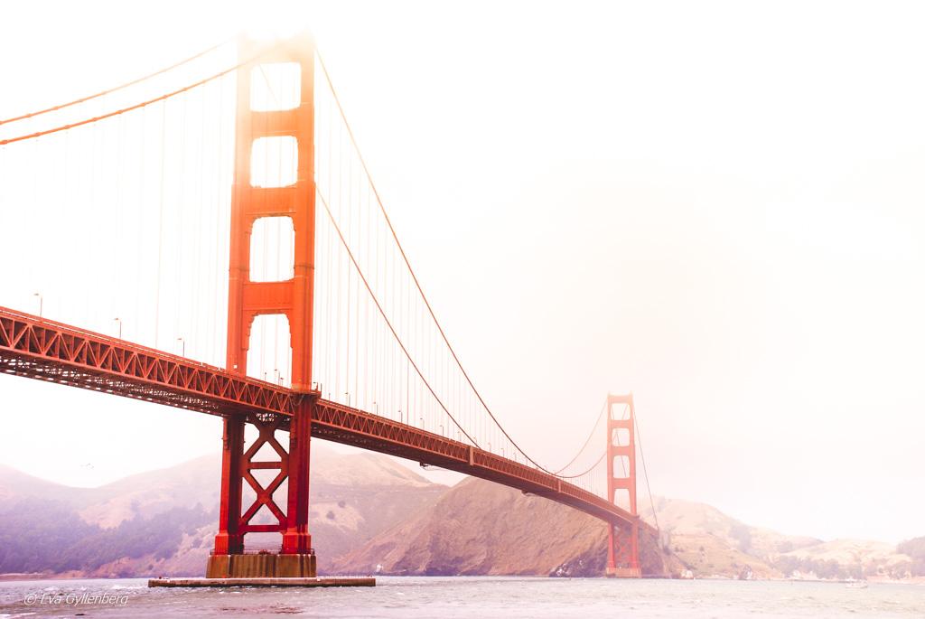 San Francisco California USA 12