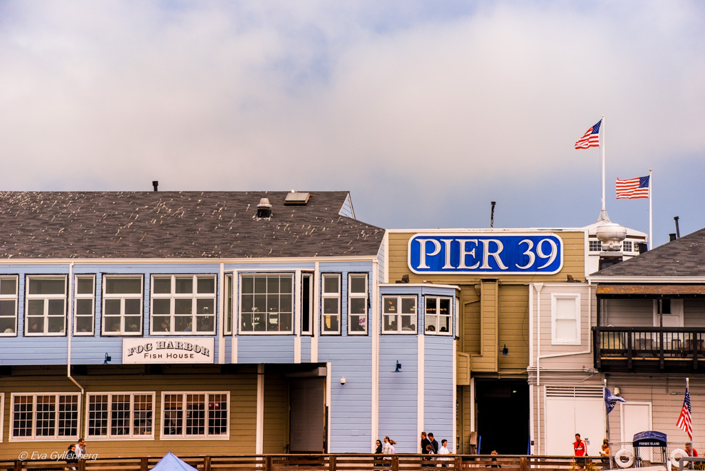 San Francisco California USA 3