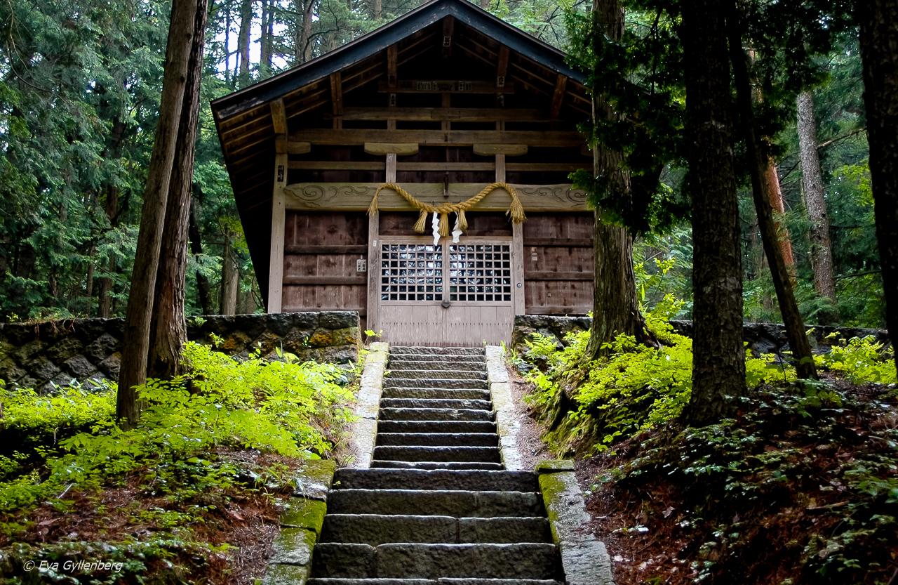 21 foton som får dig att vilja åka till Japan 22
