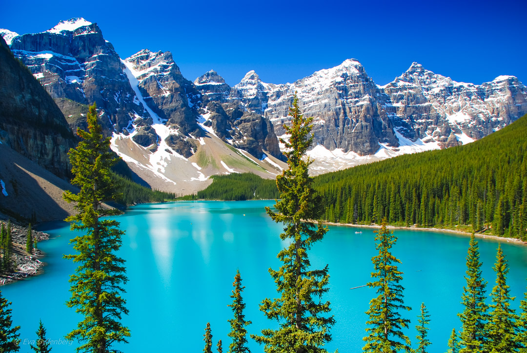 Road trip i British Columbia del 2: Banff & Jasper