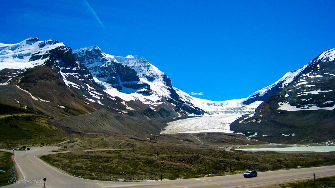 Columbia Icefields 3