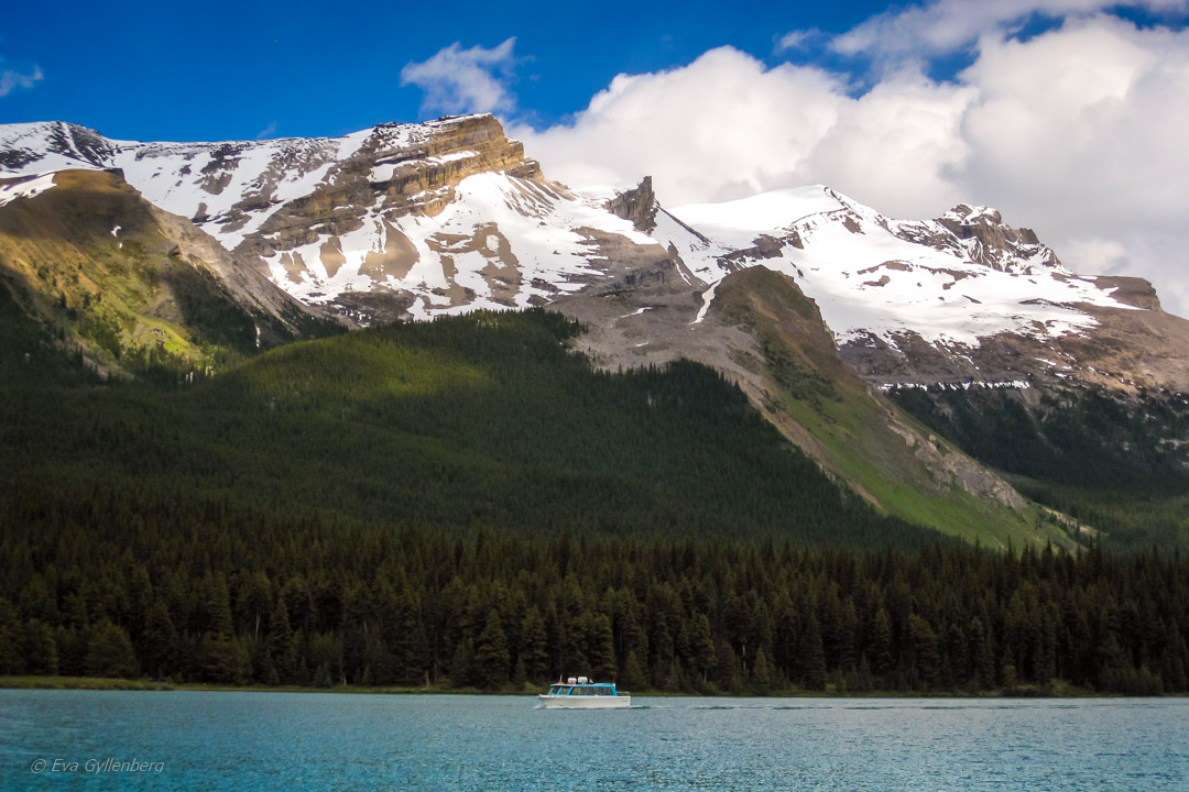 Fotoalbum från British Columbia 90