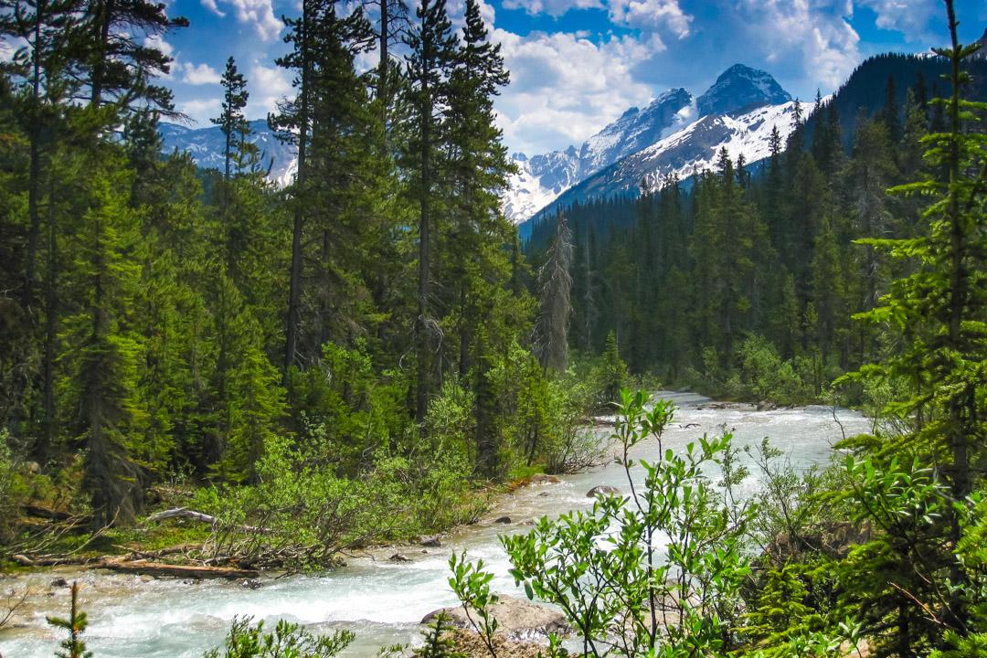 Fotoalbum från British Columbia 42