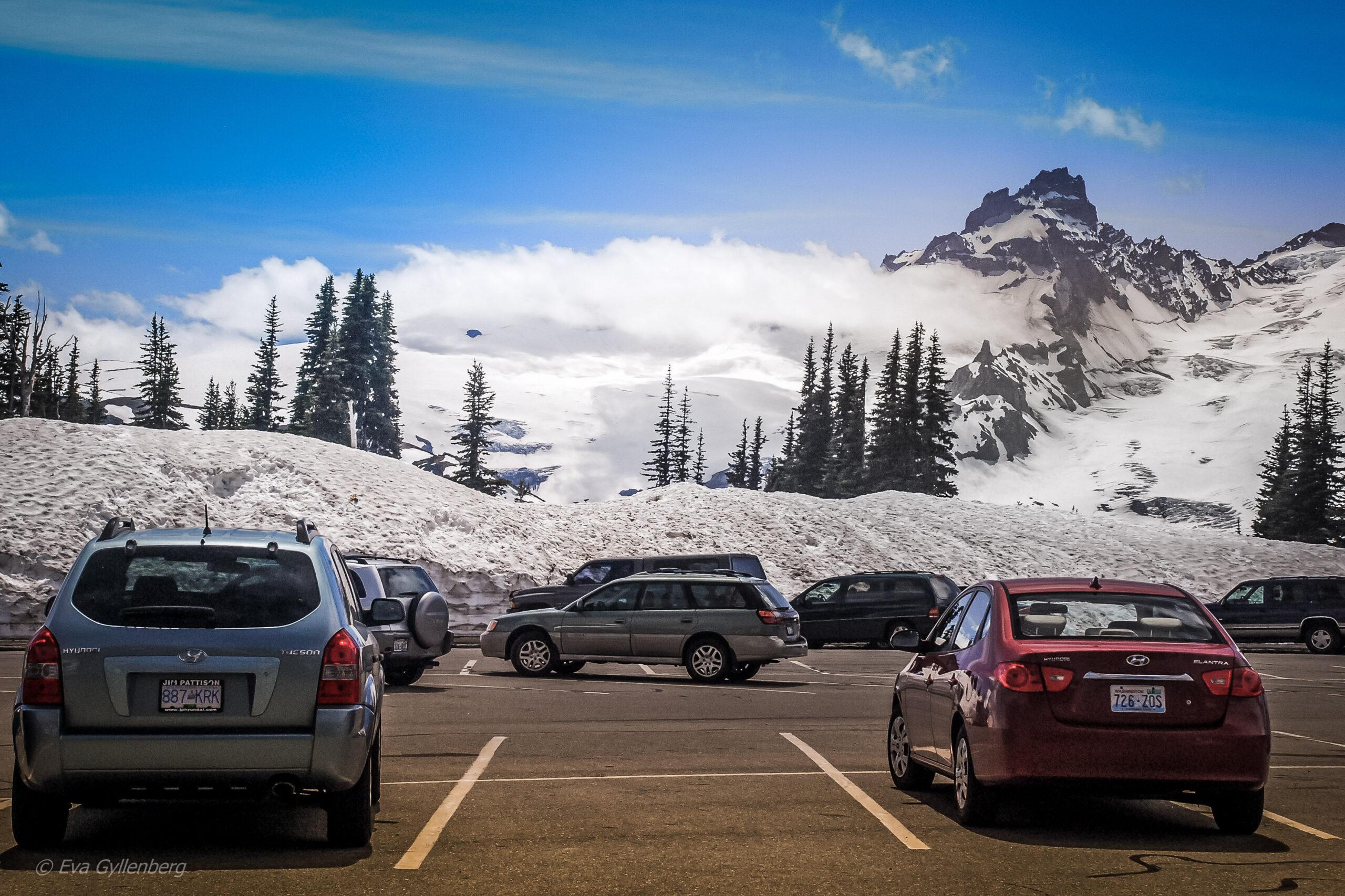 Mount Rainier National Park: Glaciärer och sommarsnö 10