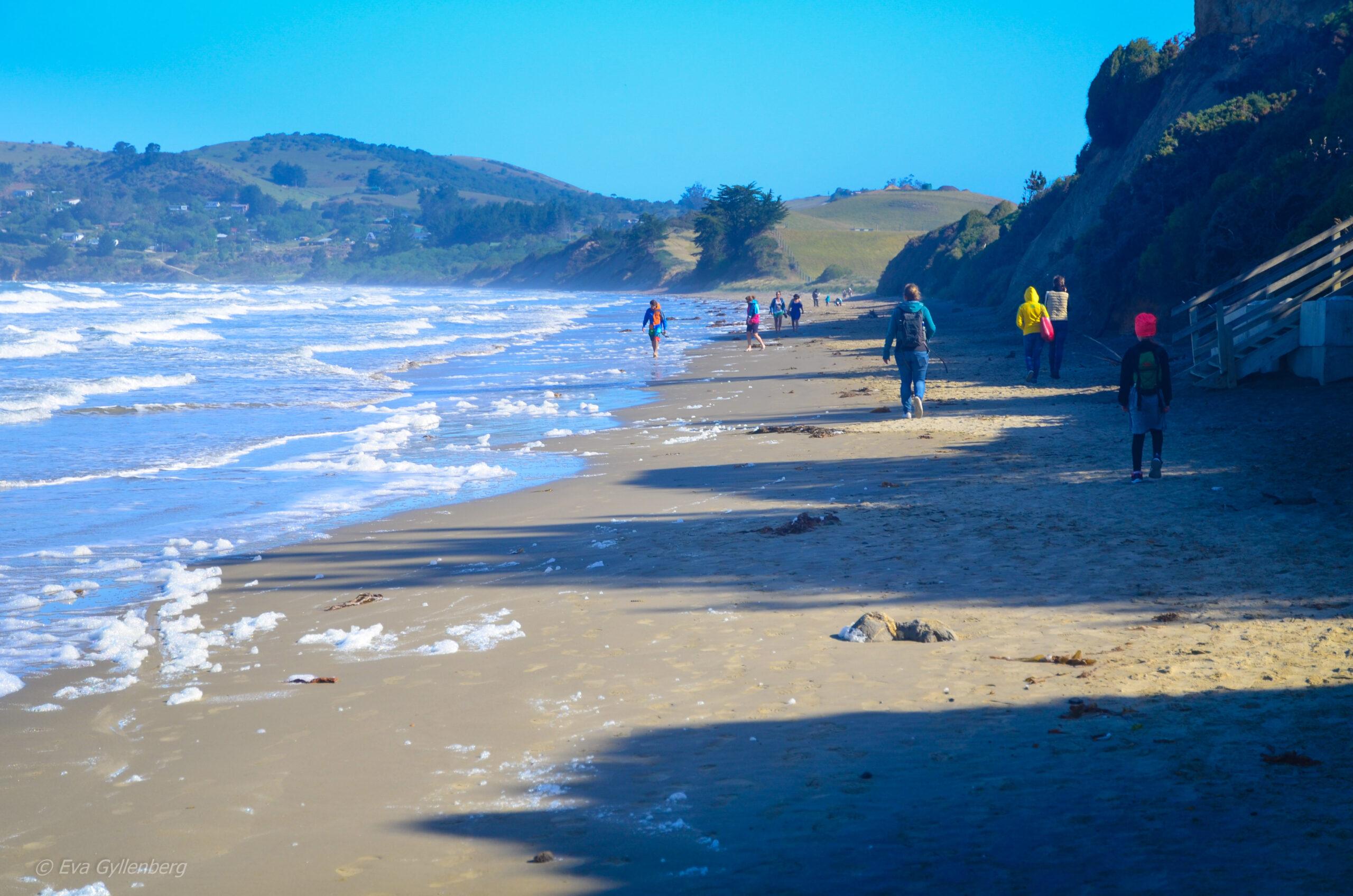 Stranden vid Moeraki Boulders - Nya Zeeland