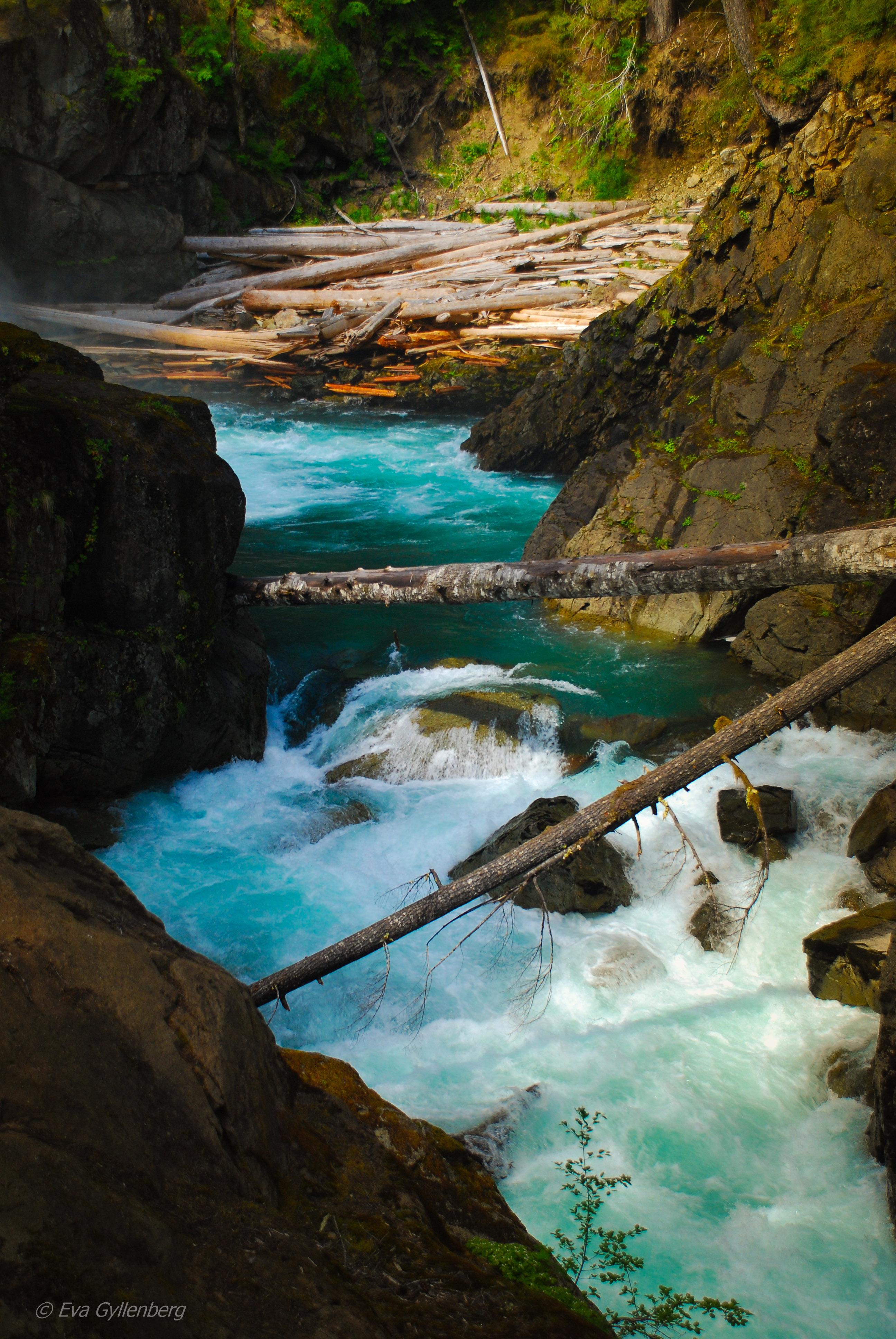 Silver falls - Mount Rainier - Washington