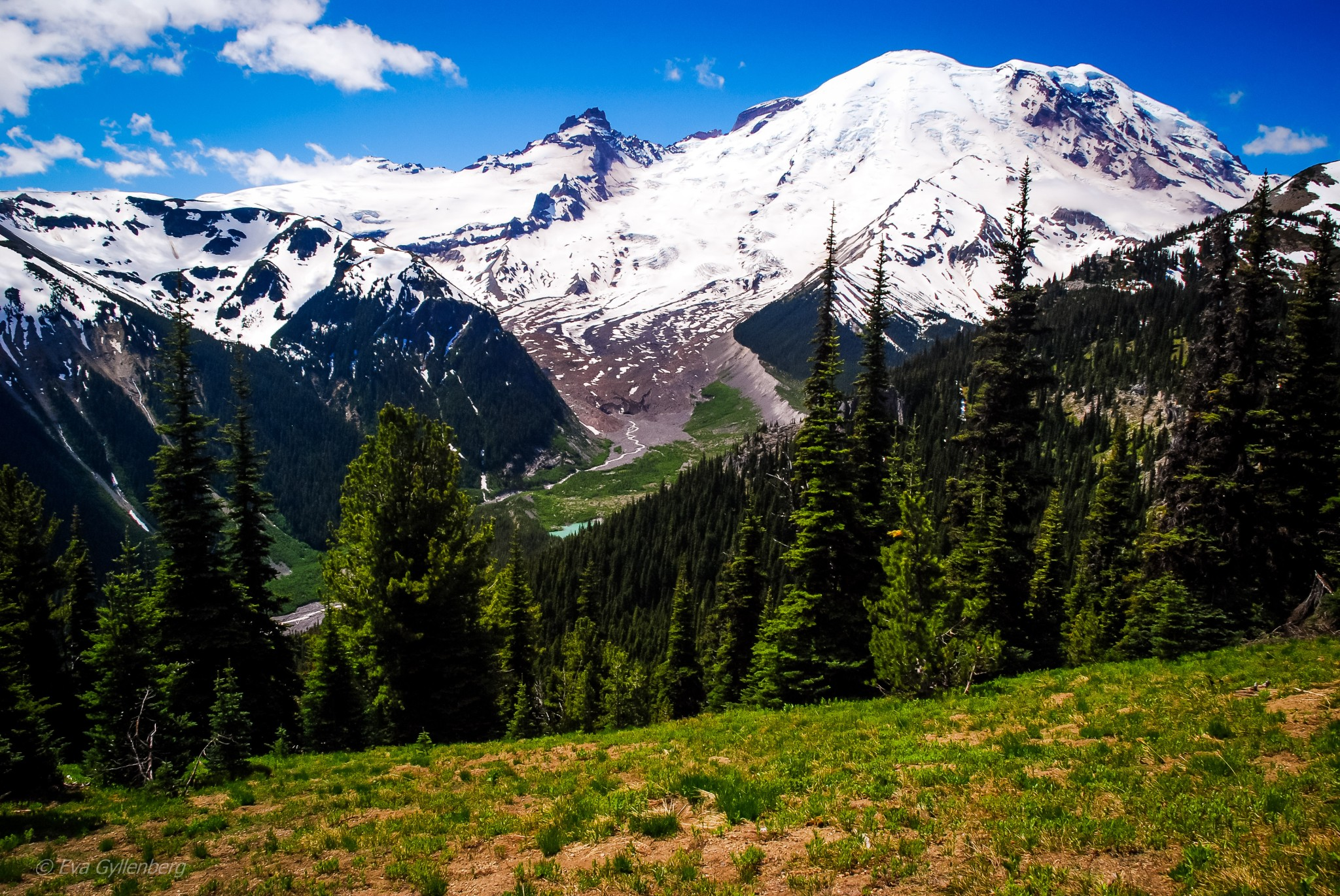 Storslagna vyer - Mount Rainier - Washington