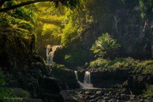 Vägen till Hana - Mauis vackraste väg 24